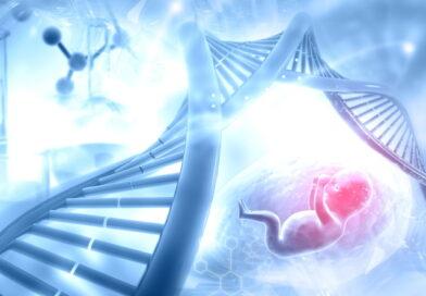Генетическое исследование плода